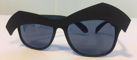 lunettesfillon.png