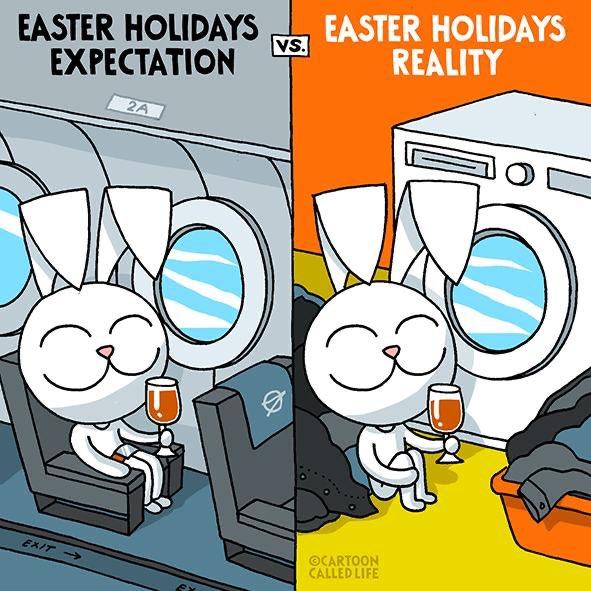 © Bunny Cartoon