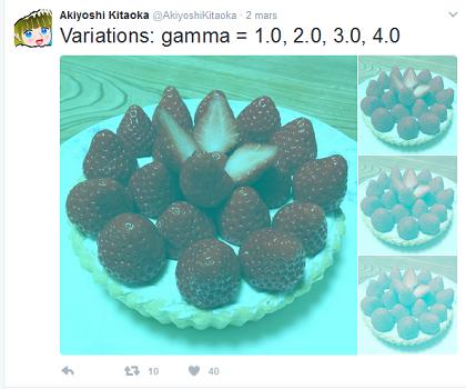 fraises_illusion_optique.png