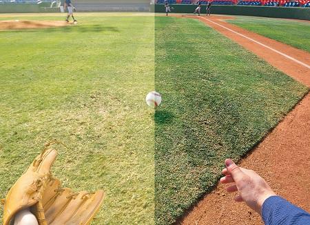 oakley_baseball.jpg