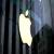 Apple avance sur ses lunettes de réalité augmentée