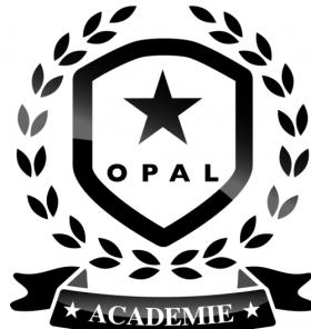Devenez spécialiste de l'enfant avec Opal !