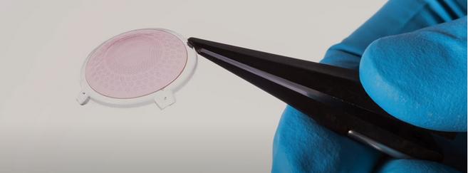 Des implants rétiniens pour redonner la vue aux aveugles