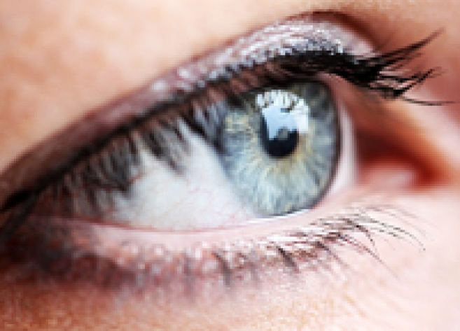 Essilor et l'Institut de la Vision s'allient pour étudier le vieillissement visuel