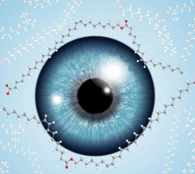 Traitement de la sécheresse oculaire : une découverte prometteuse !