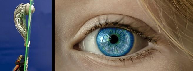 Un œil artificiel… plus performant qu'un œil humain !