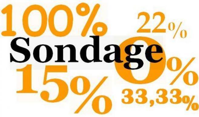 Un tiers d'entre vous fait plus de 15% de CA avec les réseaux