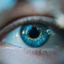 Maladies de la rétine: des chercheurs ont découvert une nouvelle piste pour préserver la vision