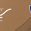 Formes rétro et couleurs pop, Blueberry lance sa collection solaire polarisante