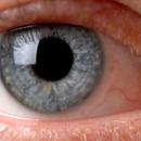Ce qu'il faut consommer pour protéger ses yeux