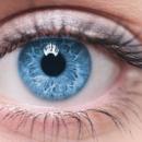 Un implant rétinien artificiel pourrait restaurer la vue de millions de personnes
