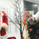 Vitrines de Noël 2015 / 2016: les coups de cœur d'Acuité