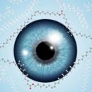 Traitement de la sécheresse oculaire: une découverte prometteuse!