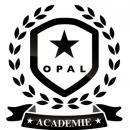 Devenez expert de l'enfant avec Opal!