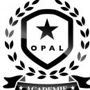 Devenez spécialiste de l'enfant avec Opal!