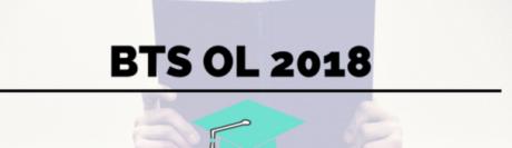 BTS OL 2018 : retrouvez le sujet et le corrigé d'Analyse de la vision et de gestion sur Acuité !