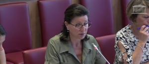 Agnès Buzyn, ministre des Solidarités et de la Santé, devant la Commission des Affaires sociales de l'Assemblée nationale le 18 juillet 2017.
