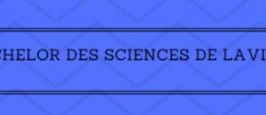 Tous les résultats du Bachelor des Sciences de la Vision 2019 sur Acuité
