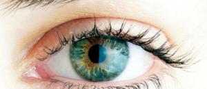 Un test oculaire pour dépister la maladie de Parkinson ?